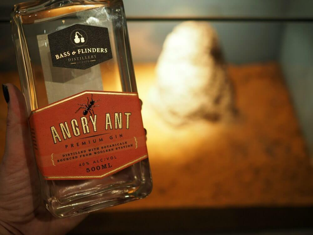 Angry Ant Gin