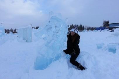 Ice Alaska (15)