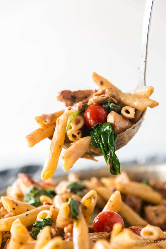 penne pasta with sun-dried tomatoes, chicken, and spinach scooped in a ladle
