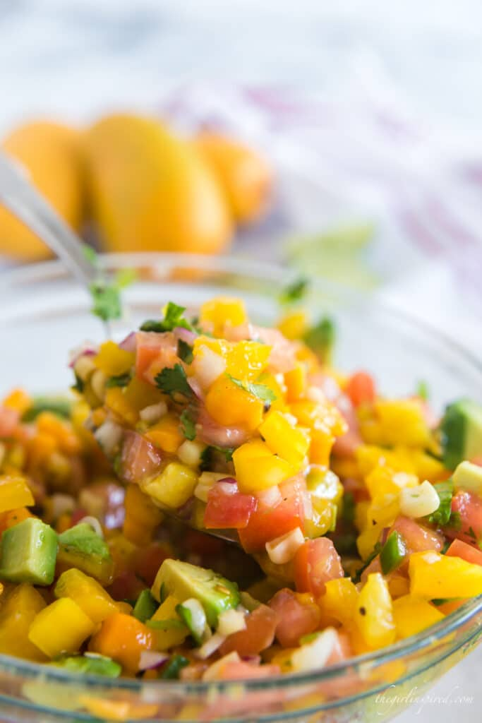 closeup spoonful of mango avocado salsa in glass bowl with whole mangos in background
