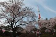 The Utsunomiya Tower