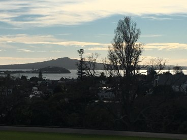 Auckland view from the Domain