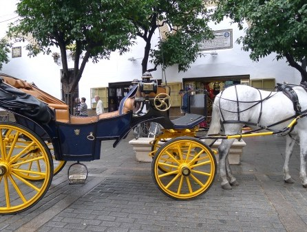 Horse-driven carriages dotted the city center.