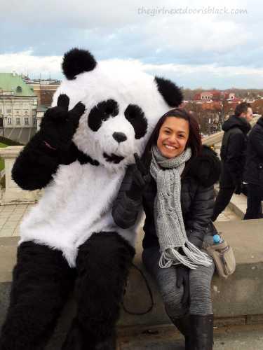 Giant Panda in Warsaw Old Town   The Girl Next Door is Black