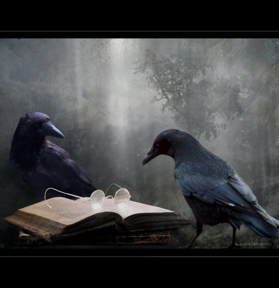 Crows Reading A Book by Hartwig HKD, flickr.com from Essential Blogging Resource Guide