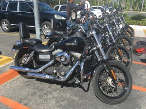 The girl on a bike dominican republic logo dominican riders harley davidson street bob fleet e1510915998652