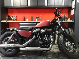 Harley-Davidson Sportster cam case customisation original