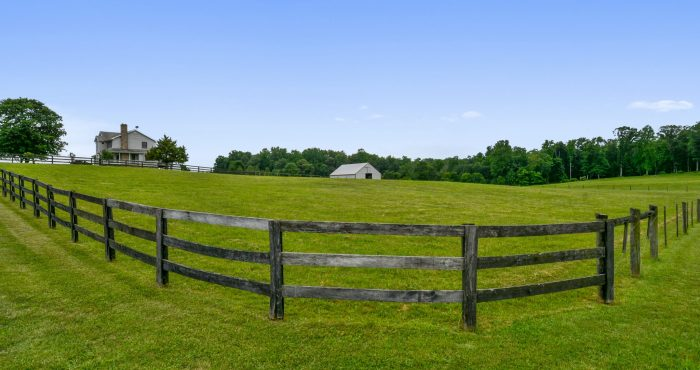 Culpeper VA Home For Sale - 9676 PADDOCK LN, CULPEPER, VA 22701 - Listed For Sale by Candace Moe, REALTOR® - Exterior-Pasture-DSC3589
