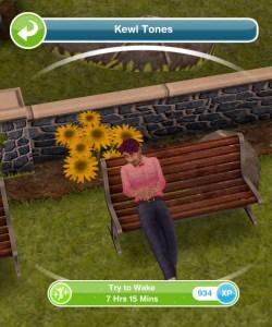 Need help with Sims 3 free play (on ipad)!? | Yahoo Answers