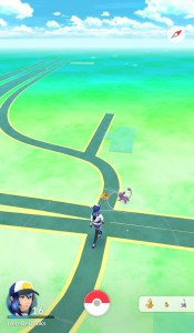 As you move around Pokémon will spawn around you.