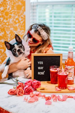 Yes Way, Froze' | The Best 4 Ingredient Froze' Recipe, Cocktail Recipe, Mocktails, Rose', National Dog Day, Easy Cocktail Ideas