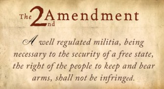 Warning: Politicians – We Will Not Allow You To Disarm Us