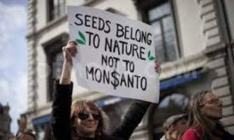 Millions against Monsanto: On the Road to Victory