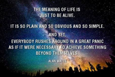 Alan Watts Quote 2