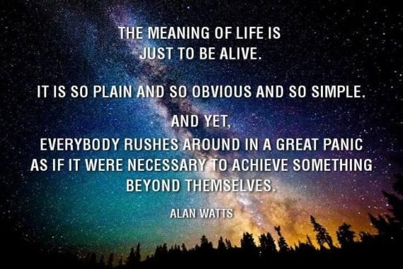 Alan Watts Quote 2
