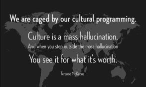 culturalprogrammingpic