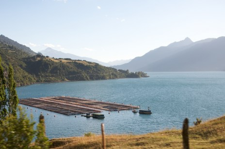 Farmed Salmon Pens