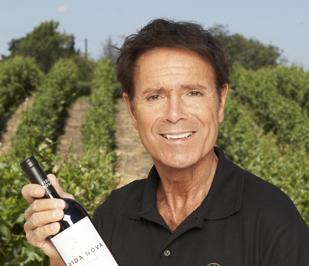 Cliff in vineyard