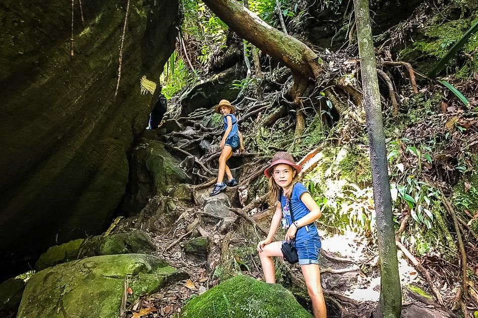 Jungle Walk Bako National Park Borneo Kids