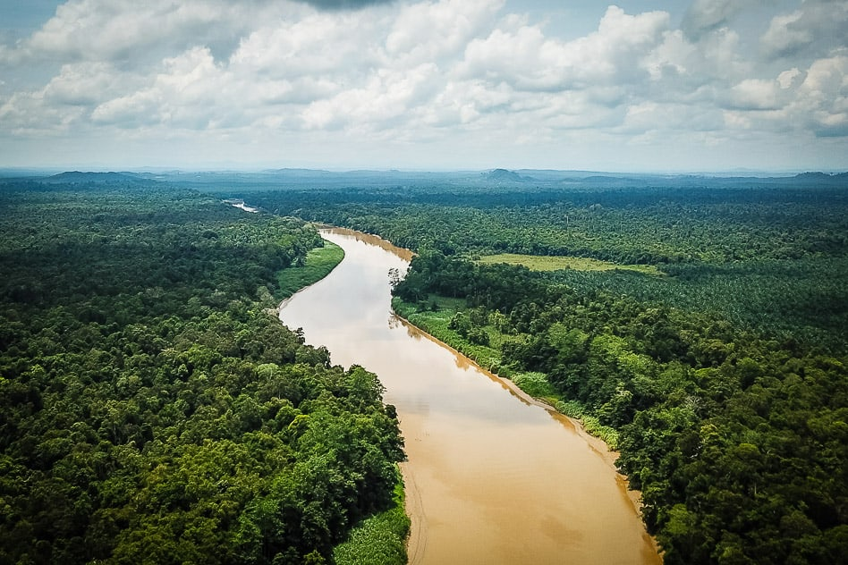 Kinabatagnan River Borneo Bilit Sukau