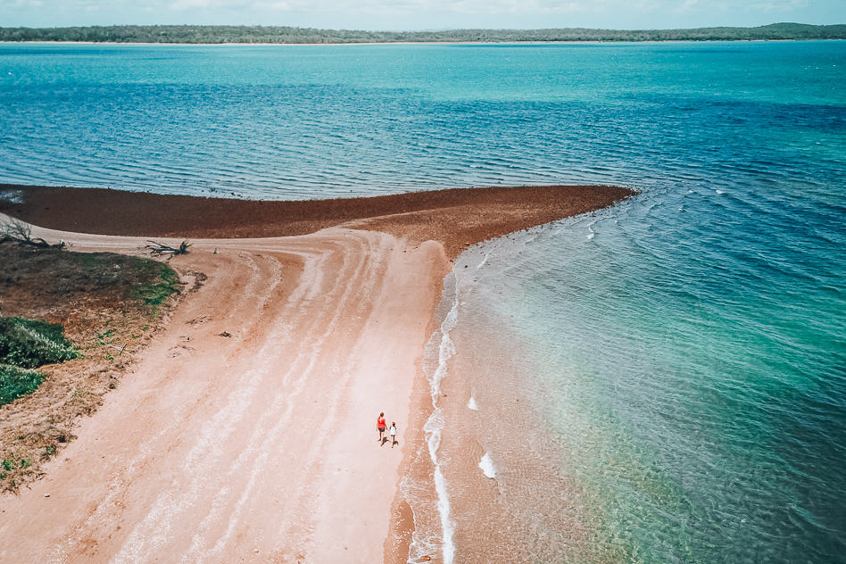 Hervey Bay Eco Marine Tours Drone Island Australia