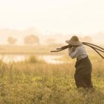 tribus montagnardes au Laos a faire montagne