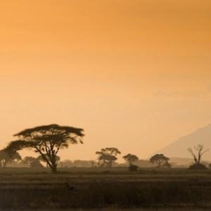 Travel guide du Tanzanie