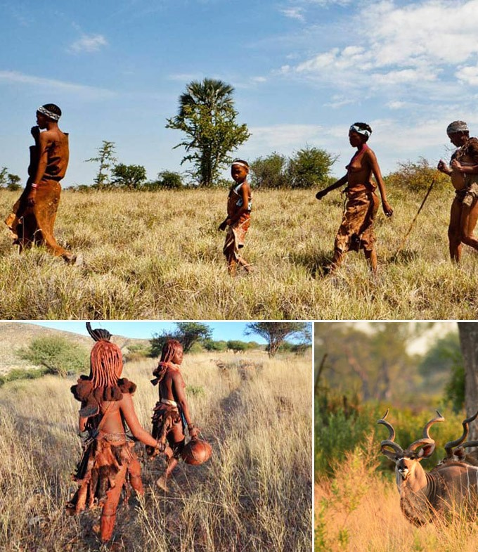 Trois activités à faire en Botswana