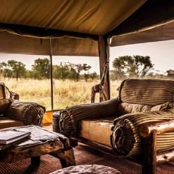 parc national de Skeleton Coast Namibie paysage que faire séjour