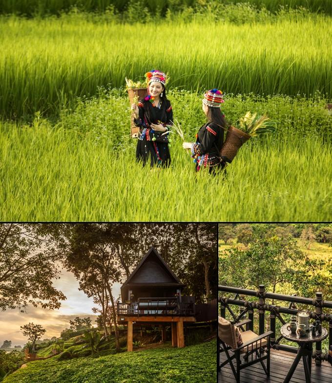 province de chiang rai thailande a faire mai 3
