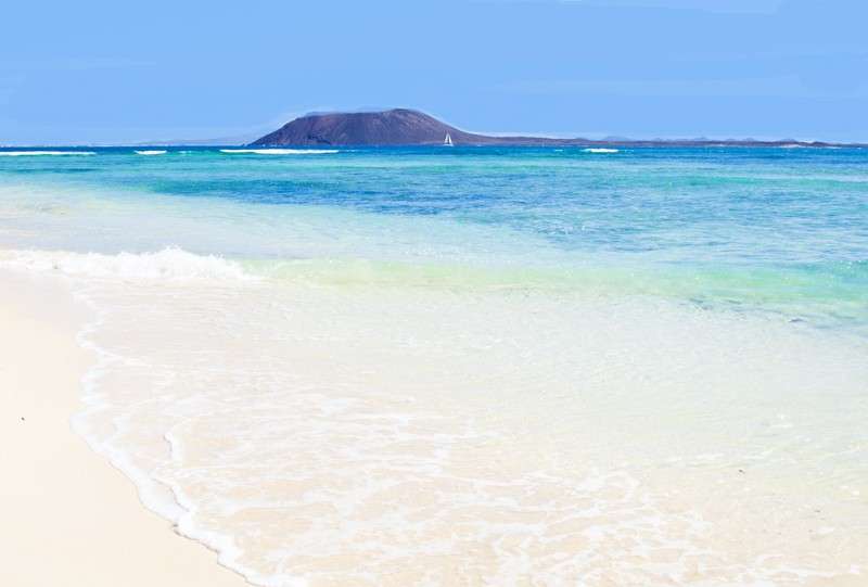 Faune sous marine capverdienne a faire