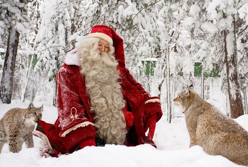 Joulukka foret Père Noel Finland Rovaniemi a voir