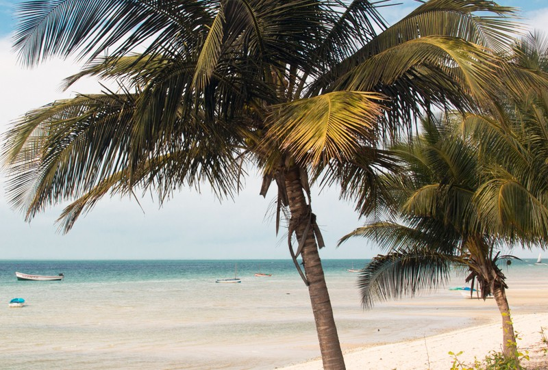 Archipel de Bazaruto Vilankulo Mozambique a faire