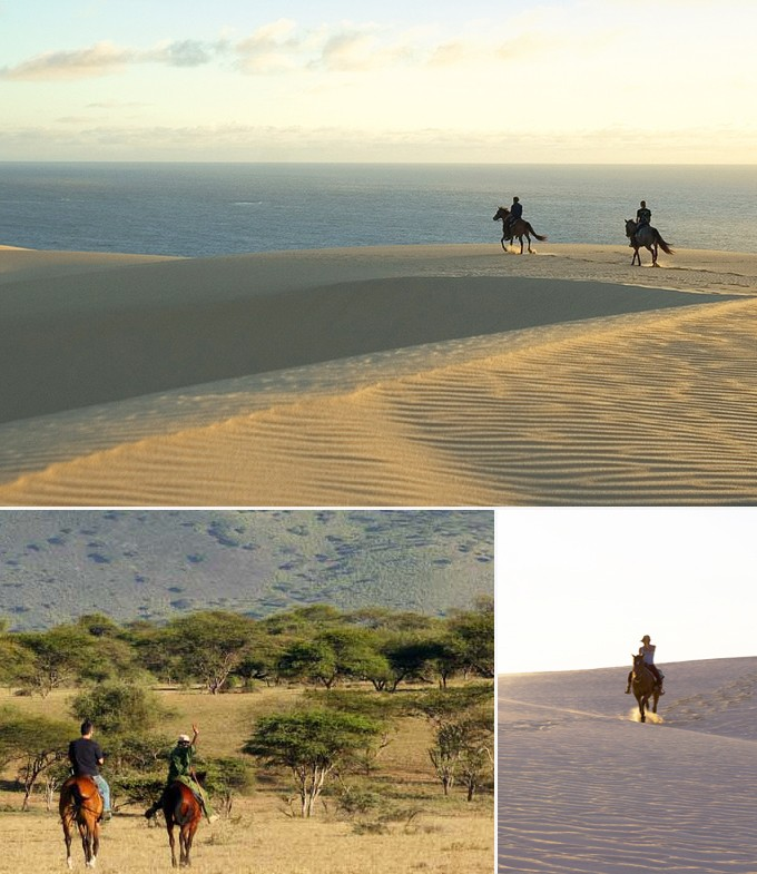 Safari equestre Vilanculos mozambique a faire