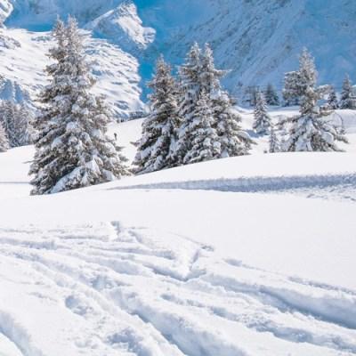 3825-vaujany-skihalf