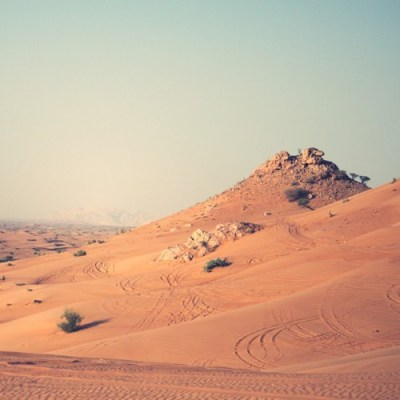 5435-desert-half