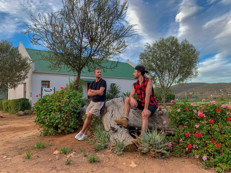 things to do in oudtshoorn