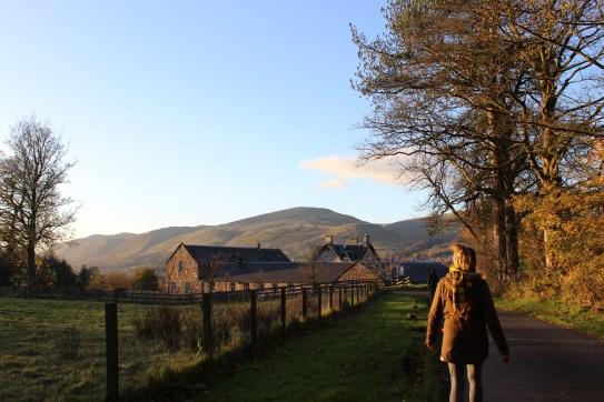 Cottage Photo 3