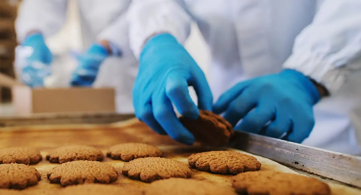 Food Safe HACCP blue nitrile gloves used to removing cookies from oven tray