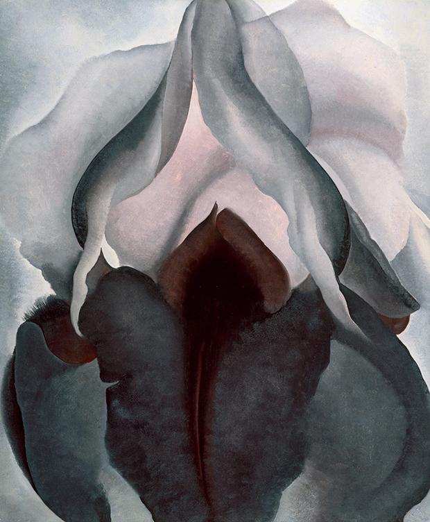 Flower Painting | Black Iris (1926) by Georgia O'Keeffe