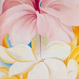 GEORGIA O'KEEFFE'S FEMININE FLOWERS