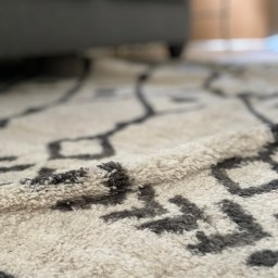 THE RUG: A TEACHING TOOL FOR LOVE, ACCEPTANCE, AND LETTING GO