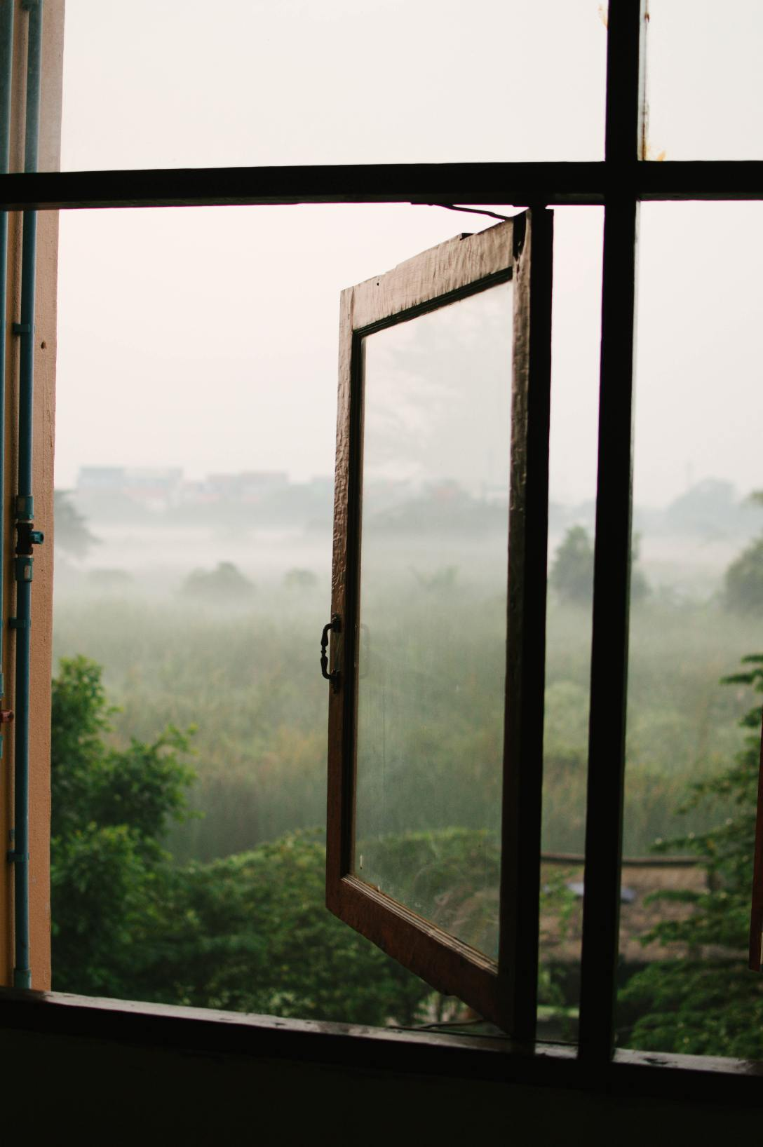 open window with trees and fog outside