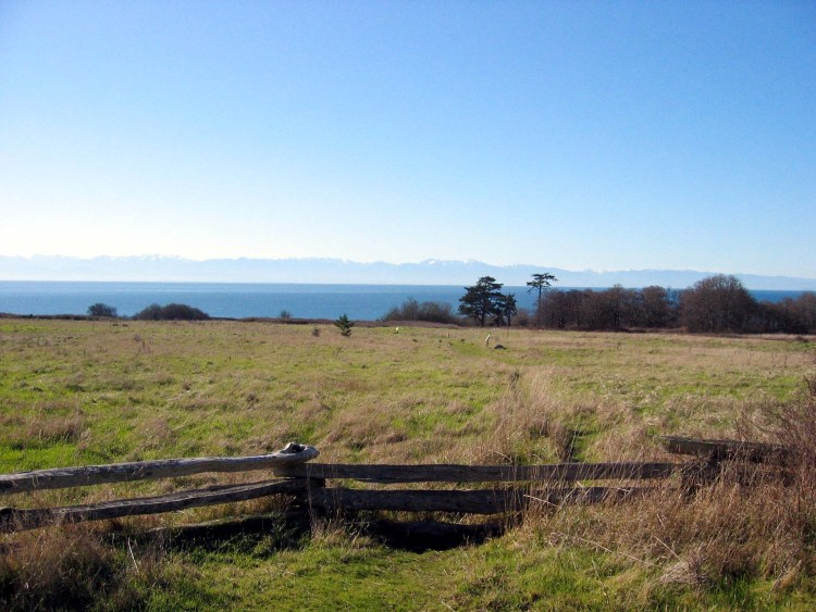 Coastal prairie view at San Juan Island National Historic Park