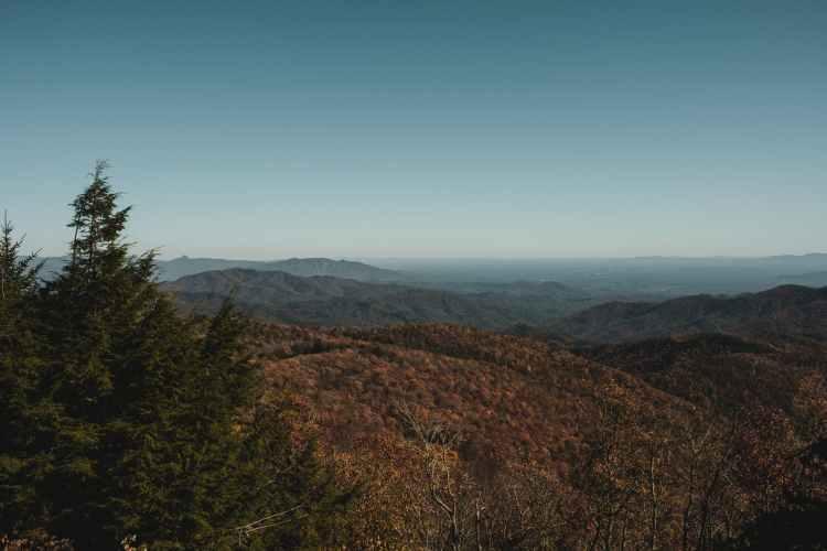 wood light dawn landscape of Blue Ridge mountains