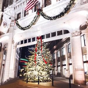 Wrigley-Building-Christmas-Chicago