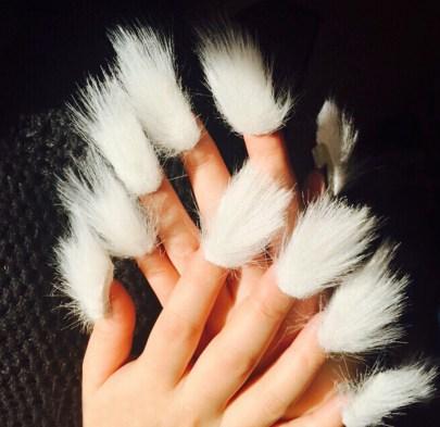 fur nails 1
