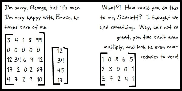 Concerning linear algebra and its applications to love