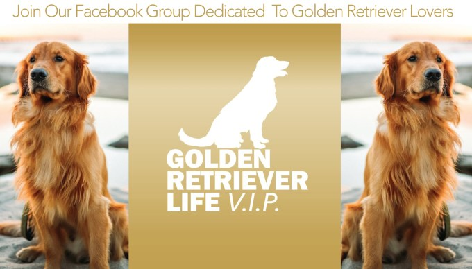 Join Our VIP Facebook Group