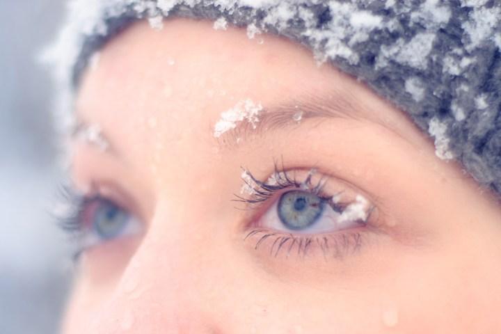 freddo pelle